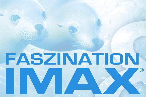 IMAX & Haus des Meeres | P.O.S. Forex Aufsteller | Detail IMAX Logo