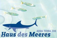 P.O.S. Forex Aufsteller | Detail Haus des Meeres Logo