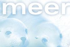 IMAX & Haus des Meeres | P.O.S. Forex Aufsteller | Detail 1 Slogan