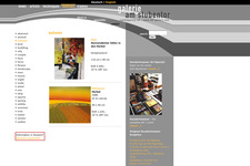 Gallerie am Stubentor | Website | Motive