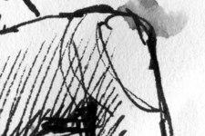 Esmeralda | Skizze 2 | Detail: Bein rechts