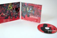 Lorenz Raab XY:BAND | Digipack (voll geöffnet, innen) und CD (Label)