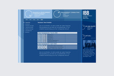 IBB Consulting | Website | Screen Design | Content 2